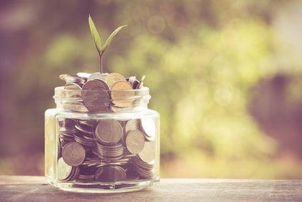 Tipps zur Finanzierung von Waldgrundstücken, Pferdekoppeln und ähnlichen Grundflächen
